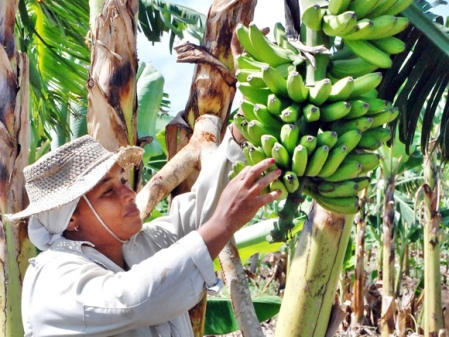 Dia-internacional-mujer-rural-La Tunas_foto Yaciel Peña de la Peña 1